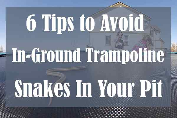 6 Tips to Avoid In-Ground Trampoline Snakes In Your Pit